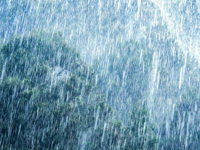 ゲリラ豪雨 台風